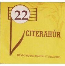Citerahúr 22-es
