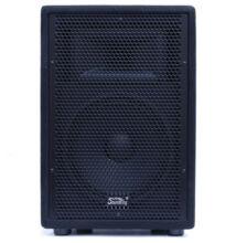 """Soundking J210 200W 10"""" passzív-hangfal"""