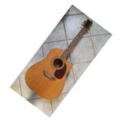 Paramount BW-4152CE-N akusztikus gitár