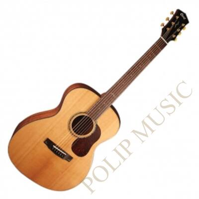Cort Gold 06 with case akusztikus gitár