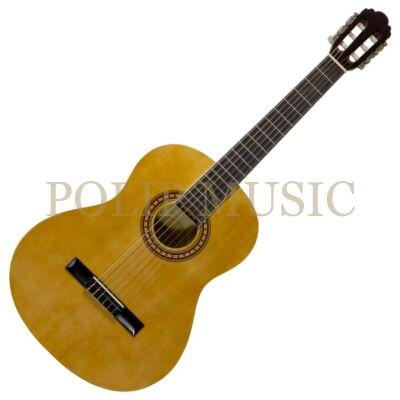Pasadena CG-161 NT  4/4 klasszikus gitár