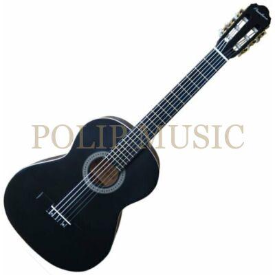 Pasadena SC01SL Black 4/4 klasszikus gitár